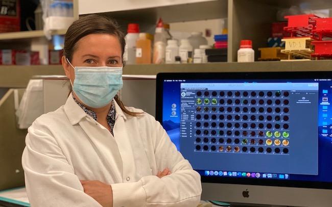 Dr. Daniela Weiskopf