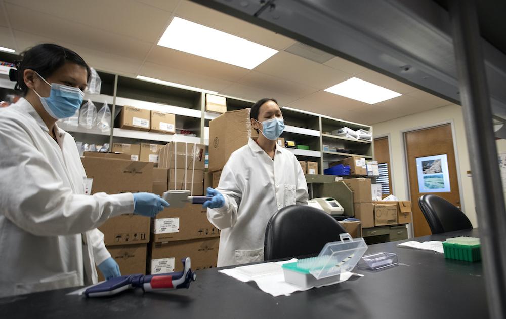 Jennifer Dan, M.D., Ph.D., Clinical Associate, and Sydney Ramirez, M.D., Ph.D., Postdoctoral Researcher